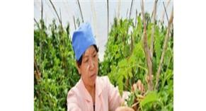 宁波银行上海分行联合太平保险举办 太平养老社区品鉴会
