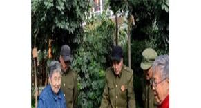 银杏树下的分享者第48回|听养老领域专家王锦谈中国人如何养老